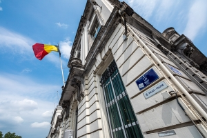 Decision of the Consultative Committee on travel abroad